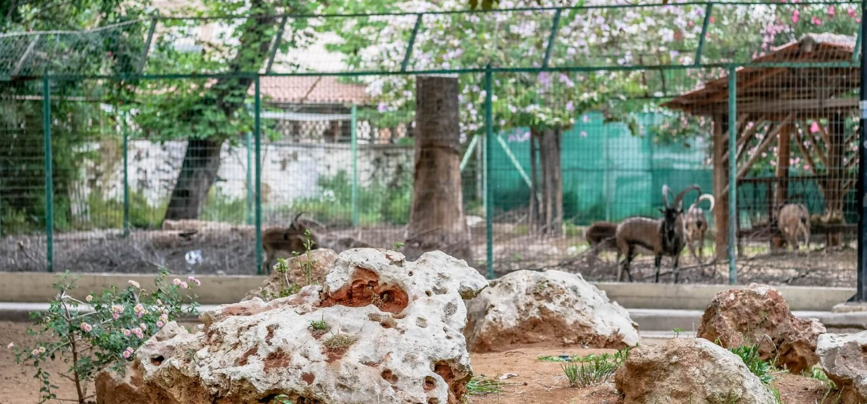 Kipos-Municipal-Park-Chania-Crete-allincrete.com-29